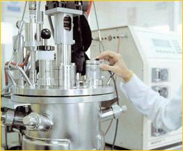 areas biotecnologías