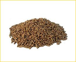animal nutrition area